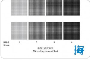 Sample of the Ringelmann Chart - to be used for reference only, and not as a device for dark smoke measurement Source: Hong Kong Marine Department Notice No. 92 of 2014